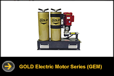 gold electric motor series