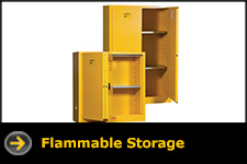 lyon storage flammable