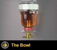 luneta bowl category